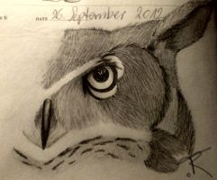 owl sketch by Flyingdragon77