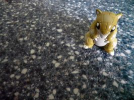 Sandshrew in the Corner by PetersonPhotos