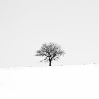 Winter IV by Jack070