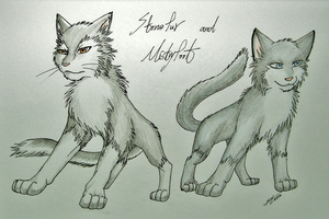 Warriors: Stonefur and Mistyfoot by Marshcold