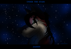 UNDER THE STARS by alphakw