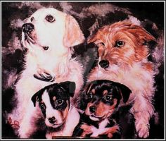 Ceasar, Rocky, Joe and Charlie by Lynne-Abley-Burton