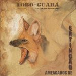 Lobo-guara postcard by CindyAA