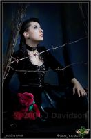 Gothic Fairy Tale by cosfrog
