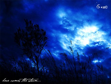 _storm by isea