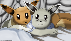 The Eevee couple by Phatmon66