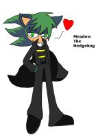.:FC:. Meadow The Hedgehog by ScourgeXNazo2
