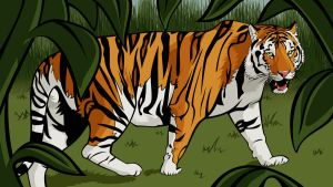 Hunting Tiger by Colormate
