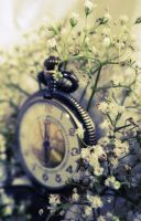 The Illusion of Time by ForeverLilly