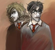 Harry and Hermione III by periwinkle-blue