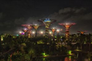 gardens in the bay megatrees by lesterlester