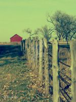 Country Life by erbphotography