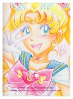Crayola Crayon Sailor Moon by LemiaCrescent