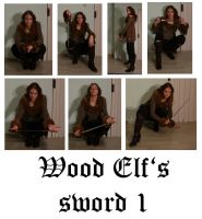 Wood Elf's sword 1 by syccas-stock