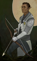 Commissioned inquisitor card 2 by the-vinsomer