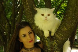 With white cat 01 by Anna-LovelyMonster