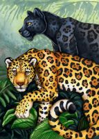 Jaguar Totem Card by XianJaguar