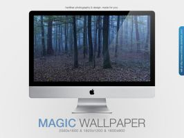 Magic Forest Wallpaper by MrFolder