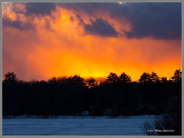 Martins Pond Winter Sunset by Mogrianne