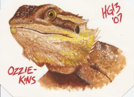 Ozzie-Kins Painting by hglucky13