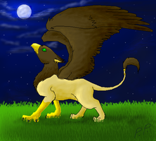 Griffin by Phoenix-Pinion