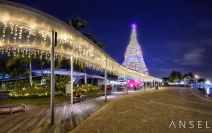 Vivocity Xmas Tree by Draken413o