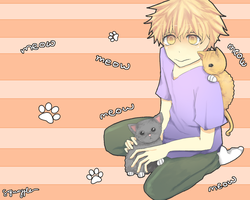 mihashi and cats.. by Squaffle