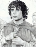 Frodo by PrimeHunter