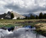 Yosemite National Park 6259-2 by arches123