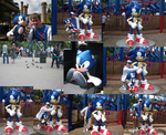 Me and Sonic at Alton Towers by StefanTheHedgehog