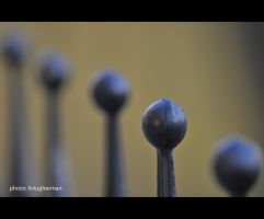 diagonal balls by liviugherman
