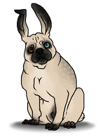 Bug the Pug by orengel