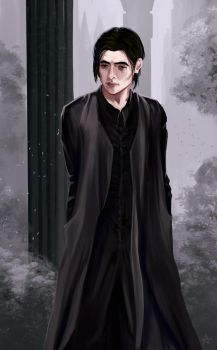Young professor Severus Snape by noxy24