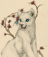 Kojin - White Lioness by WhiteSpiritWolf