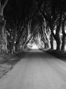 King's Road by drums-r-cool