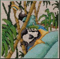 Rain Forest Toucan and Parrot by Mattsma