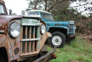 Willys by finhead4ever