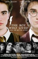 The Boy Who Lived Poster by KMeaghan