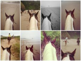 Collage: Horseback Riding [ 1 ] by xsilver-cloudx