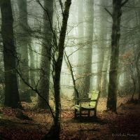The Empty Seat by Nelleke
