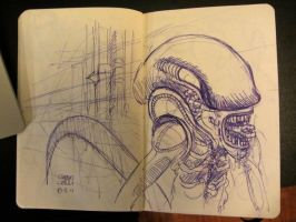 Moleskine 4 by claudiocerri
