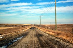 Dusty Road To the Horizon by lonnietaylor