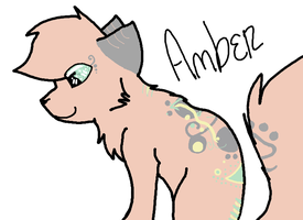 Amber by TimidFawn