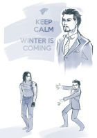 Marvel - Winter is coming by Esk-Phantom