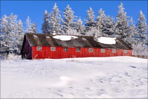 Red Outbuilding in Winter by bacardi870