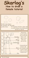 How to draw a female by Skarlog
