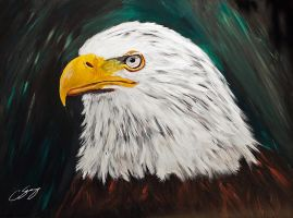 Bald Eagle by dx
