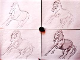 Sketches by LindaColijn