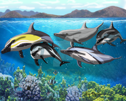 Dolphin Family - Finished by Catbirdwoman