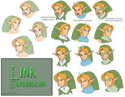 Link Expressions + Riders Costume by SiscoCentral1915